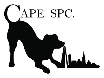 CAPE SPC: Exhibiting at the Hospitality Design Show
